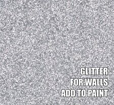 "100g FINE SILVER GLITTER FOR WALLS ADD TO PAINT OR VARNISH ADDITIVE .008"" .2mm"