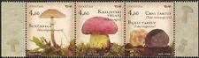 Croatia 2013 Fungi/Mushrooms/Plants/Nature 3v set (n44630)
