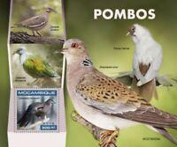 Mozambique - 2019 Pigeons & Doves - Stamp Souvenir Sheet - MOZ190204b