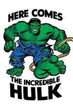 INCREDIBLE HULK 709 JACK KIRBY T-SHIRT 1:50 VARIANT NM LEGACY TIE
