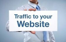 Let's Bring Daily Internet Traffic To Your Auction or Store! (30 day package)