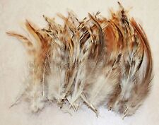 "50+ 5-7"" Natural Red Grizzly Chinchilla hackle feathers for Crafting, New"