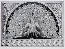 Pintura Nouveau gráfico recargado Pavo Real Pluma Diseño Impresión de Arte Poster LF2188