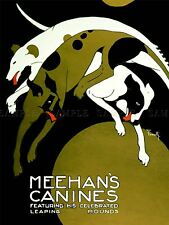ADVERTISING THEATRE CIRCUS ANIMAL DOG CANINE MEEHAN SHOW LEAP BALL POSTER LV1159