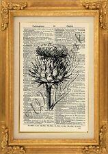 ORIGINAL - Thistle Botanical Print on Vintage Dictionary Page-Wall Art - NO.433B