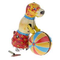 Le chien pousse la balle ronde, l'étain, le jouet, les objets à