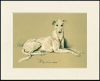 GREYHOUND RESTING LOVELY DOG PRINT MOUNTED READY TO FRAME