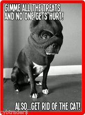 Funny French Bull Dog Bandit  Refrigerator / Tool Box  Magnet Gift Card Insert