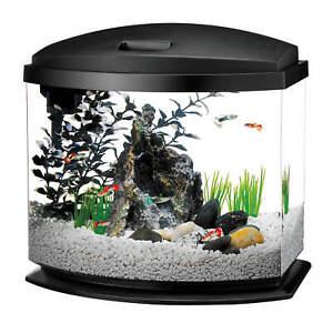 Aqueon MiniBow LED Desktop Fish Aquarium Kit in Black