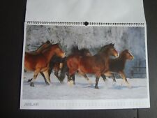 Pferde kalender photos photo calendar horses horse meine freunde edition 2015