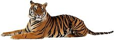 sticker decal car laptop macbook kitchen room tiger bike animal pet zoo vinyl