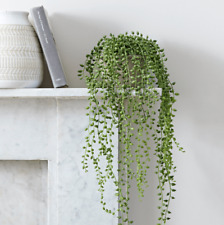 "String of Pearls Hanging Succulent 4 Cuttings Each 2"" long (Senecio Rowleyanus)"