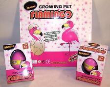 4 HATCHING GROWING FLAMINGO EGG hatch grow bird eggs hatchem novelty item new