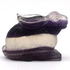 "2""Rabbit hare Stone Fluorite Figurine Crystal Healing Reiki Office Dector#475"