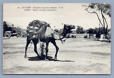Egypt Postcard Pre Amazon Water Melon deliveries on camel back in Cairo LOL