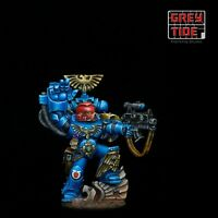 Space Marine Sergeant Web exclusive 2008, full NMM Pro Painted