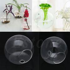 Wall Hang Glass Flower Planter Vase Home Garden Ball Decor Terrarium Container