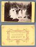 W. Lehmann, Gmunden, Österreich, Autriche, Chutes d'eau, Wasserfall vintage