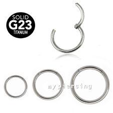 G23 Titanium Hinged Seamless Segment Ring Nose Hoop Earring Labret Septum Ring