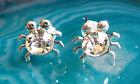 Goujon Boucle d'oreille argent crabe Araignée Insecte Animal rampant cristal
