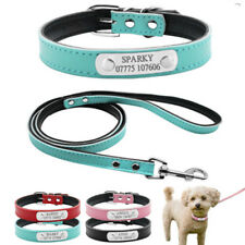 Personalized Dog Collar and Leash Set Free Engraved Dog Name Black Red Blue Pink