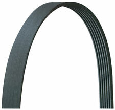Drive Belt 6PK1718 (6PK1715) Ford Focus Mondeo Transit Connect 1.8 TdCI