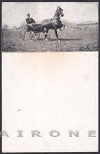 ALESSANDRIA CITTÀ 129 FIERA EQUINA SAN GIORGIO 1923 CAVALLI Cartolina viagg 1923