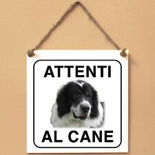 Ciobănesc de Bucovina 1 Attenti al cane Targa cane cartello