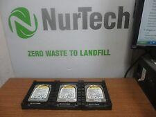LOT OF 3 WD Western Digital VelociRaptor 80GB 10KRPM SATA Hard Drive WD800HLFS