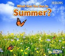 What Can You See in Summer? (Paperback or Softback)