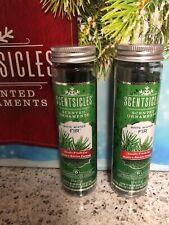 White Winter Fir® Scentsicles™ Set of 2 Bottles of 6 each w/ hooks