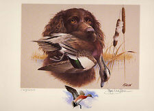 SOUTH CAROLINA  #8 1988 DUCK STAMP PRINT BOYNKIN SPANIEL Color Rem  Jim Killen