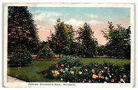 1919 Peonies, Minnehaha Park, Minneapolis, MN Postcard