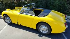 Austin Healey Bugeye / Frogeye Sprite CruZin Windows