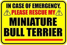 IN EMERGENCY RESCUE MY MINIATURE BULL TERRIER STICKER