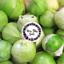 20 Samen Tomatillo Purple Physalis ixocarpa mexikanische lila Spezialität