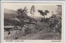AK St. Veit an der Gölsen, Am Gscheid, Alpengasthof 1950 Foto-AK