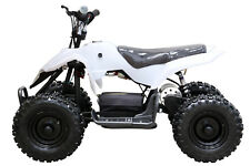 500W Kid Electric ATV Mini Quad Bike White