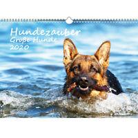 Hundezauber Große Hunde DIN A3 Kalender 2020 Welpen und Hunde - Seelenzauber