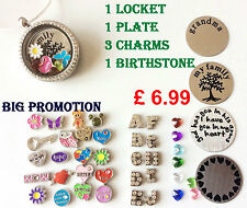 Living Glass Memory Locket Necklace + Charms