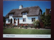 POSTCARD FLINTSHIRE HOLYWELL - THATCHED COTTAGE