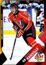 2013-14 Baie Comeau Drakkar #3 AlecJon Banville
