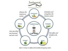 Ambrosial 15ml C-LEFT essential oil blend Natural  free shippig from india