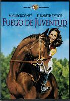 Fuego de juventud (National Velvet) (DVD)