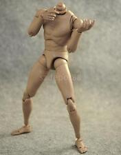 1/6 Nude Narrow Shoulder Action Figures Male BODY for Hot Toys TTM18 TTM19