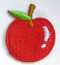 Cute RED APPLE Iron Sew On Embroidered Badge Patch Tshirt Transfer Applique Kids