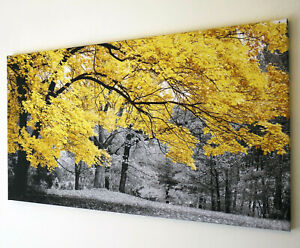 YELLOW TREE BLACK AND WHITE CANVAS PRINT  WALL ART PICTURE 18 X 32 INCH