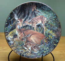 """Danbury Mint Woodland Creatures Collector Plate """"Mother Dear"""" by Amy Brackenbury"""