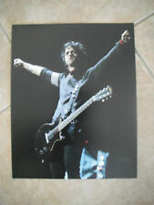 Billie Joe Armstrong Color 11x14 Live Photo Concert Green Day #2