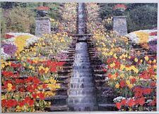 1000 piece jigsaw puzzles used